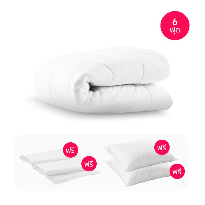 ไส้ผ้านวม Sleep Happy ผ้านวมไมโครไฟเบอร์ พร้อม ปลอกผ้านวม (คอตตอน 100% 300 เส้นด้าย) (6 ฟุต)